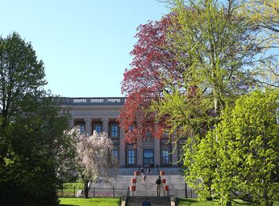 dinand library in spring