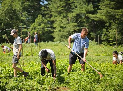 Food history summer class taught by visiting lecturer Christopher Staysniak visits Cotyledon Farm in Leicester, MA. Photo by Tom Rettig