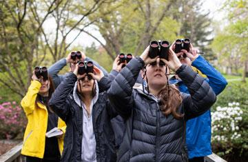 group of students peering through binoculars