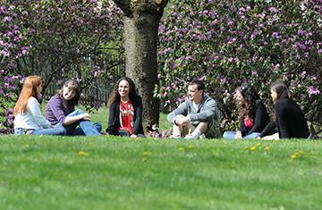 faculty member under a tree outside on grass with 5 students