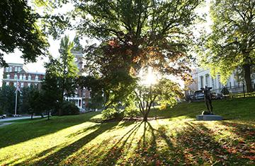 sun peaking out of trees with O'Kane Hall and Dinand Library in background