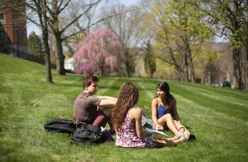 students reading outside on the grass