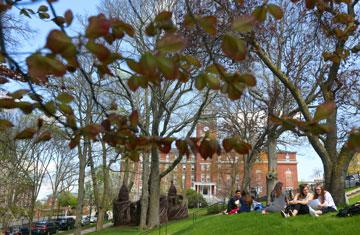 students on the lawn in front of okane