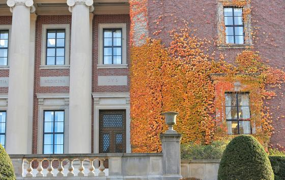 dinand library in the fall