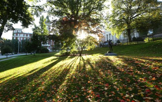 sun shining through the trees in front of O'Kane hall