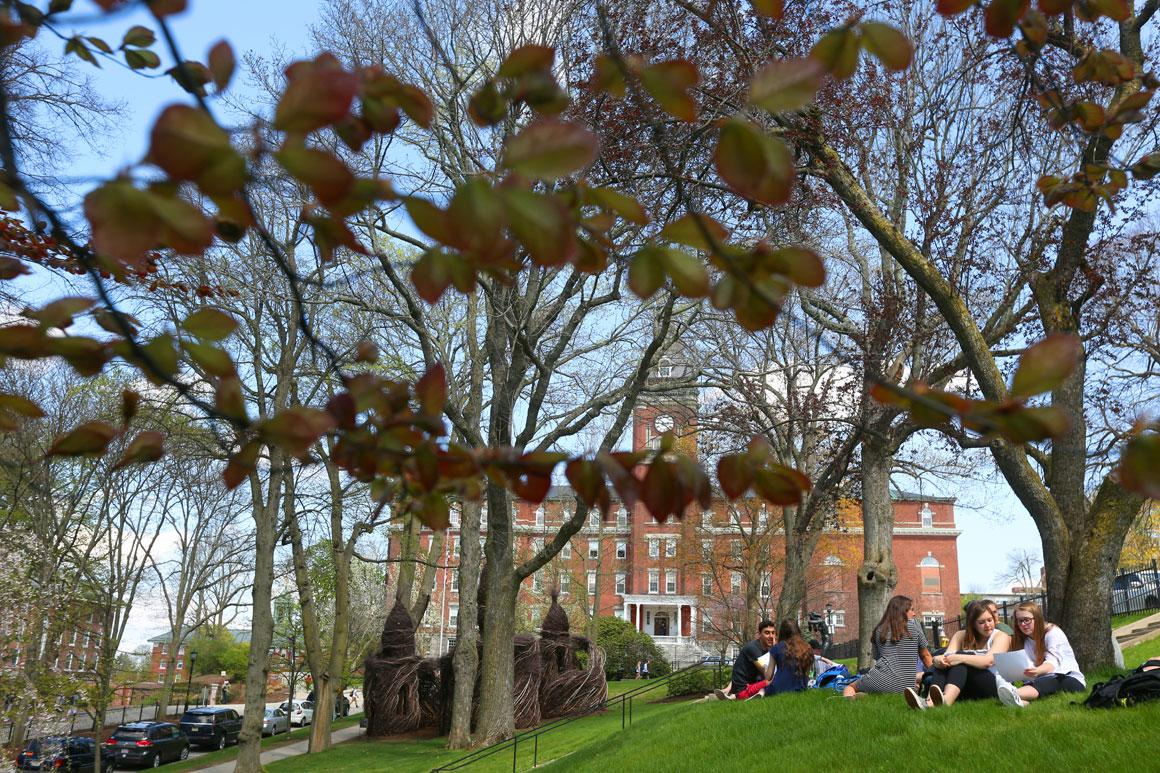 students sitting under a tree on the grass in front of o'kane hall