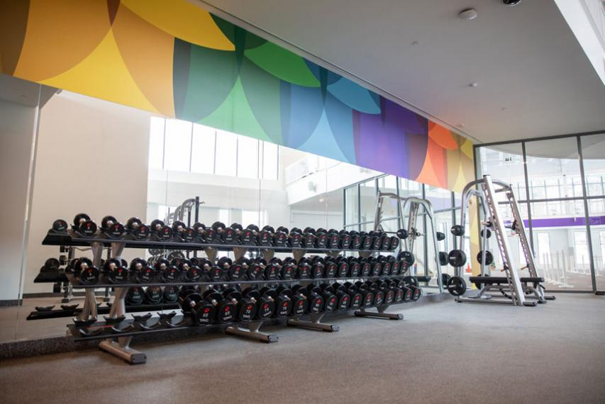 free weights inside The Jo