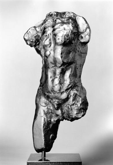 Study for Torso of the Walking Man